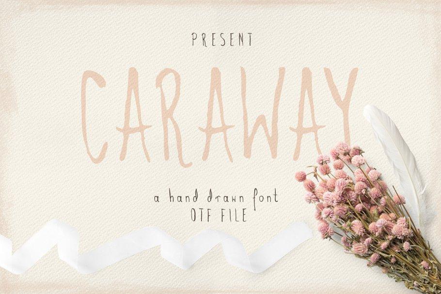 高雅的手绘字体 Caraway插图